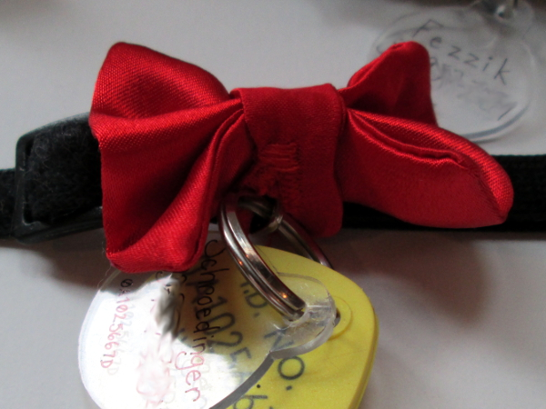 How to Make a Cat Bow Tie: Optional Buttonhole | Red Circle Crafts