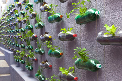 Plastic Bottle Planters from Rosenbaum
