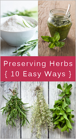Preserving Herbs from Tipnut