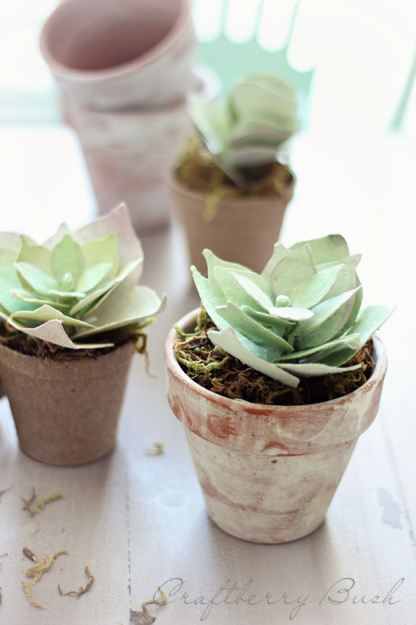Paper Succulent Tutorial from Craftberry Bush