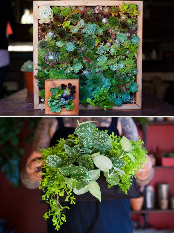 Vertical Plant Gardens From Refinery 29