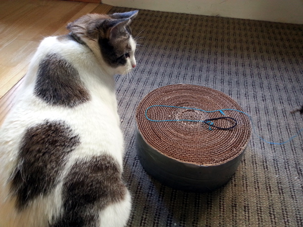 Upcycled Cat Scratcher | Red Circle Crafts
