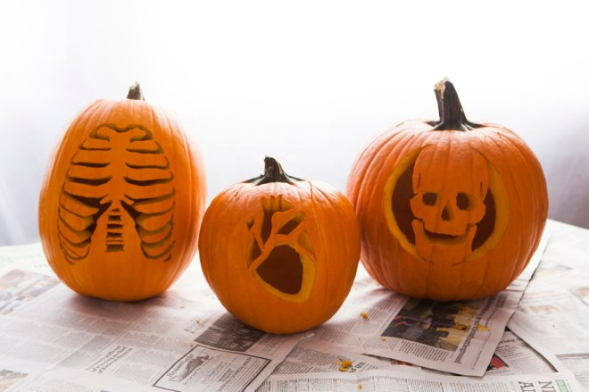 Anatomy Pumpkins from Brit + Co