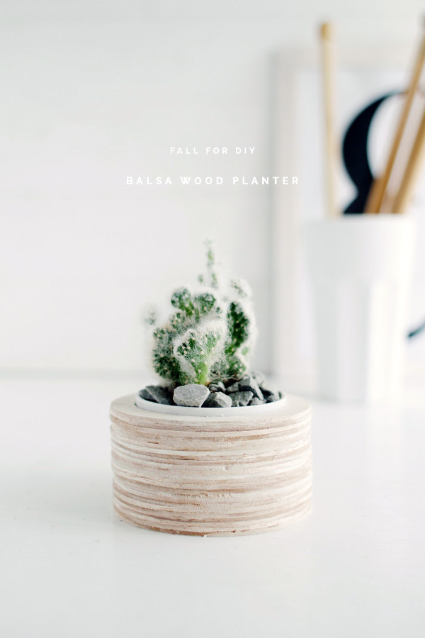 DIY Balsa Wood Planter from Fall For DIY